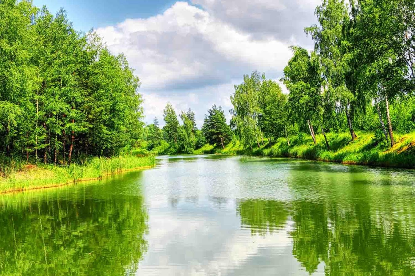 Nature Landscape Wallpaper Apl Android Di Google Play