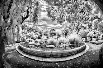 Photo: Botanical Gardens, Lisbon, Portugal