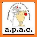 APAC - JOC icon