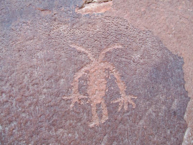 Photo: Bug guy