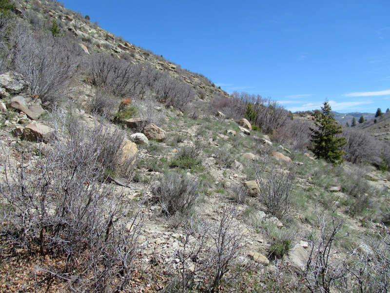 Photo: Bottom of the stock trail leaving Ford Creek