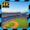 Wallpaper For Yankee Stadium icon