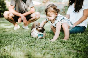 A toddler and a cat.