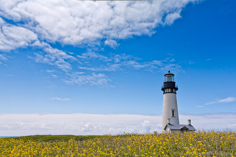 Photo: Here's an image from a beautiful day visiting the Yaquina Head Lighthouse in Newport, Oregon a few years ago. This is one of my favorite lighthouses.  Have a great afternoon!  Yaquina Head Lighthouse © photography by Patricia Davidson http://patriciadavidsonphotography.com #oregon  #oregoncoast  #yaquinaheadlighthouse  #oregonlighthouse  #landscapephotography  #photography  #newport