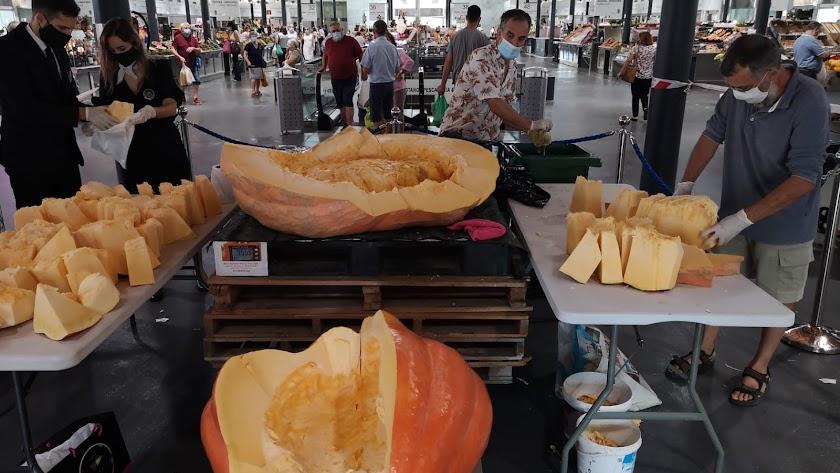 Reparto de las calabazas gigantes en el Mercado Central.