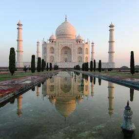 Serenity by Nadir Aziz - Buildings & Architecture Public & Historical ( marble, taj mahal, agra, india, architecture, historic,  )