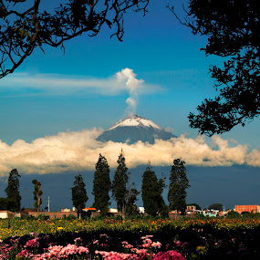Volcano popocatepetl between clouds by Cristobal Garciaferro Rubio - Landscapes Mountains & Hills ( field, cholula, volcano, mexico, flolwers, puebla, pipocatepetl, flower )