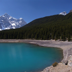 Alberta by Anastasiya Manuilov - Landscapes Travel