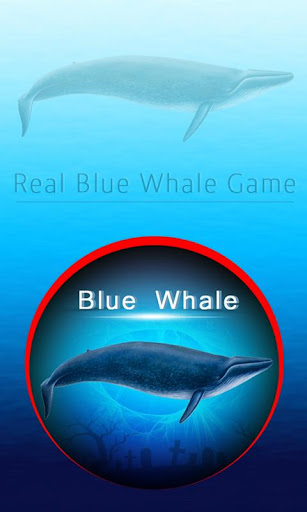 Blue Wale Game for PC
