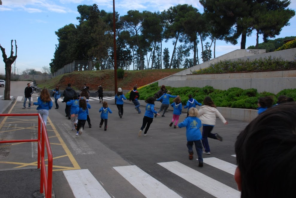 Colònies 1r Trimestre 2011