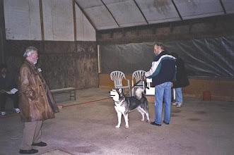 Photo: Hauenkuonon Erreys Köyliö 1999 tuomari Per-Erik Wallin