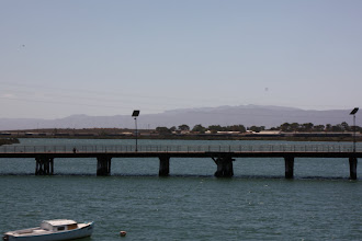 Photo: Year 2 Day 221 - On the Way in to Port Augusta