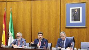 El consejero de Agricultura, Rodrigo Sánchez Haro, ante la Comisión de Asuntos europeos del Parlamento autonómico.