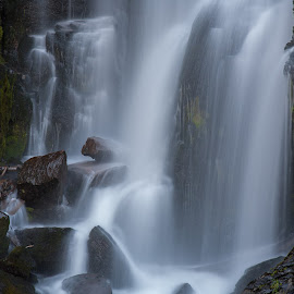 Peaceful Cascade by Mike Lee - Nature Up Close Water ( stream, peaceful, waterscape, serene, creek, waterfall, water fall )
