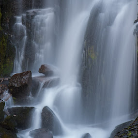 Peaceful Cascade by Mike Lee - Nature Up Close Water ( stream, peaceful, waterscape, serene, creek, waterfall, water fall,  )
