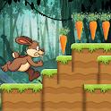 Bunny Run icon