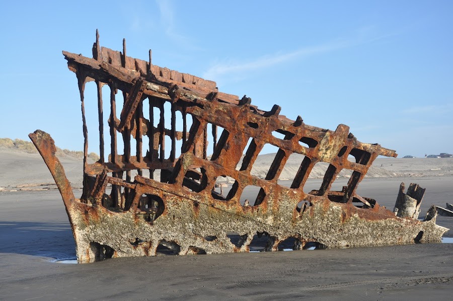 Wreck of the Peter Iredale by Bill Alley - Novices Only Objects & Still Life