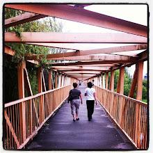 Photo: Leucuta bridge over Timis river, Lugoj, Romania #intercer #bridge #lugoj #timis #romania - via Instagram, http://instagr.am/p/L4yPngJfiT/