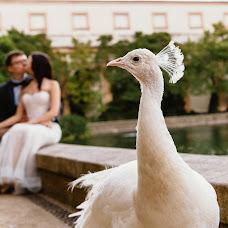 Wedding photographer Elena Tokareva (Eltophoto). Photo of 17.01.2019