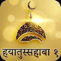 Hindi Hayatus Sahaba Part 1 icon