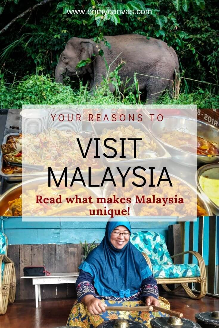 pinterest+image+reasons+to+visit+malaysia