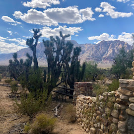 Spring Mountain Ranch by Diane Garcia - Instagram & Mobile iPhone ( sky, mountain, outside, cactus, wall )