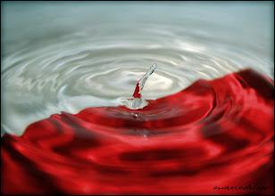 Photo: Water Drops