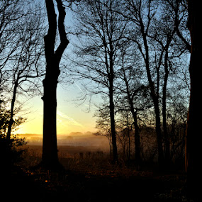 Bramdean Sunrise by Steve Corcoran - Landscapes Sunsets & Sunrises ( sunrise, hampshire, bramdean )