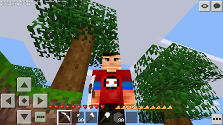 Multicraft Free Pocket Edition 1.6.13.0 screenshot 1057988
