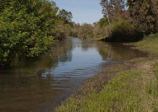 Photo: Putah Creek -Pedrick Road bridge area