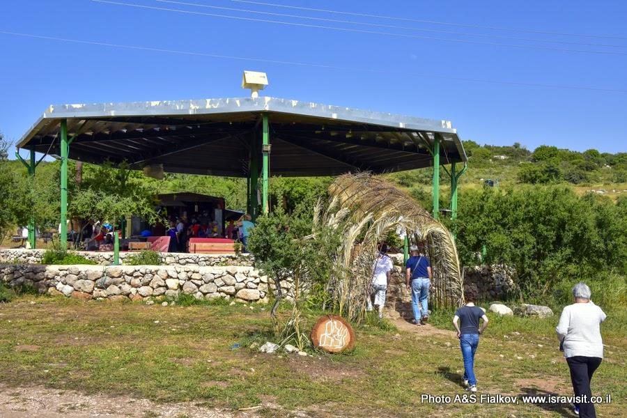 Экскурсия на экологическую козью ферму Адуллам.  Израиль, Иудея.