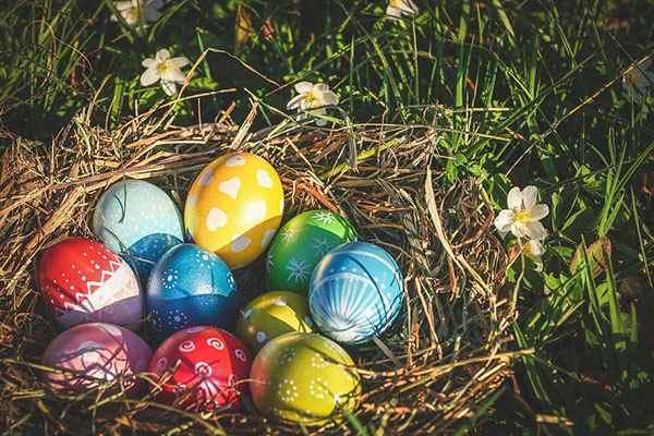 Mơ thấy trứng gà có nhiều màu sắc