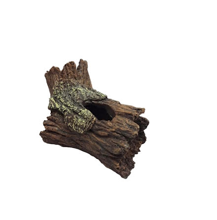 Trädgren med hålighet, 14x9x9cm