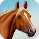 Farm Horse Simulator (game)