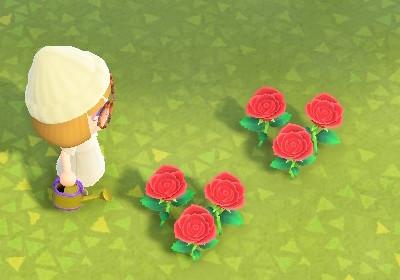 遺伝子 あつ森 金のバラ