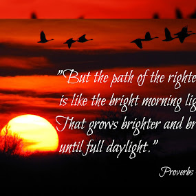Morning Light by Robert George - Typography Quotes & Sentences (  )