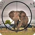 Animal Hunting Wild Adventure:hunting game
