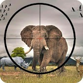 Animal Hunting Wild Adventure hunting animals game