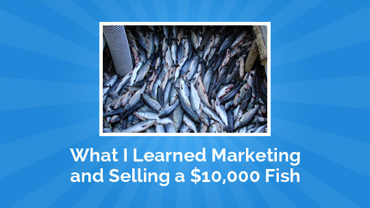 What I Learned Marketing and Selling a $10,000 Fish
