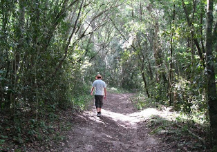 Photo: Hubby hiking in Knysna Forest