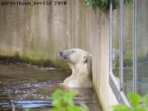 Photo: Hm, dann eben nicht ;-)