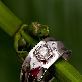 by Hanif Ismail - Wedding Details