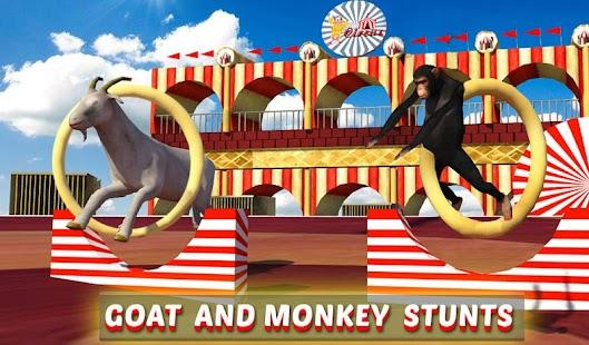 Goat-Monkey-Stunts 17