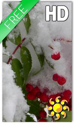 Winter Berry Live Wallpaper - screenshot