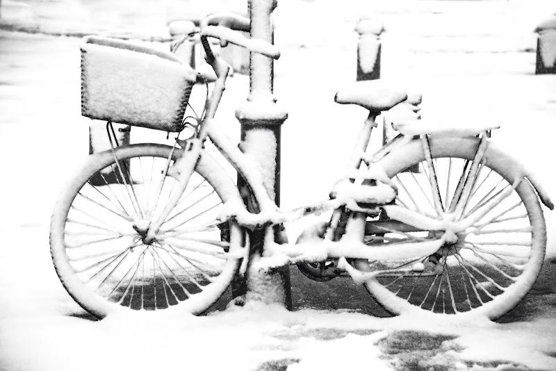 Pausa per neve. di Sognatrice