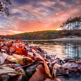 Fall Settling Two by Matthew Robertson - Landscapes Sunsets & Sunrises ( shore, water, sky, sunset, fall, trees, lake, hopkinton, leaves, pond, country, island )