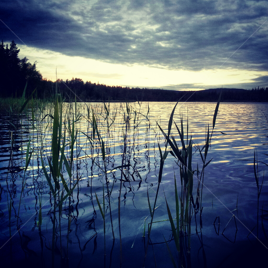Dramatic sky by Julija Moroza Broberg - Nature Up Close Water ( clouds, water, nature, grass, sunset, dark, reflections, lake, forest, woods, evening )