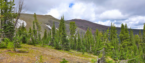 Photo: Good look at Red Mountain from tree-line