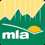 MLA Market Information Icon