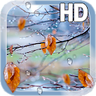 Autumn Raindrops Live HD icon